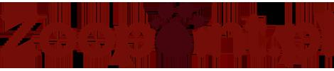 Zoopoint.pl logo